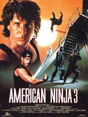 subtitrare American Ninja 3: Blood Hunt (1989)
