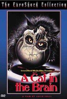 subtitrare Nightmare Concert (A Cat in the Brain) (1990)