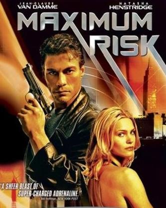 subtitrare Maximum Risk (1996)