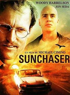 subtitrare The Sunchaser (1996)