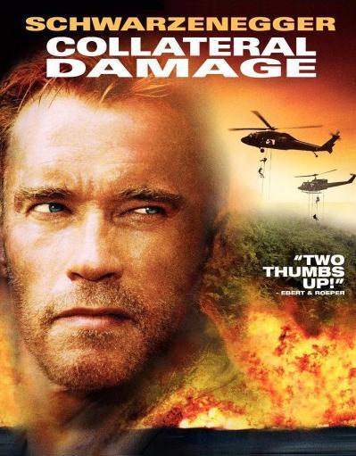 subtitrare Collateral Damage (2002)