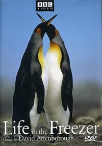 subtitrare Life in the Freezer (1993)