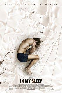 subtitrare In My Sleep (2010)