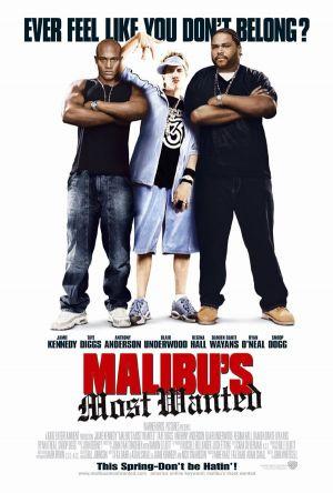 subtitrare Malibu`s Most Wanted (2003)