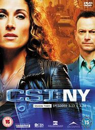 subtitrare CSI: NY (2004)