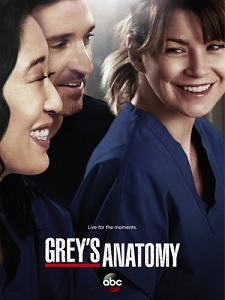 subtitrare Grey`s Anatomy (2005)