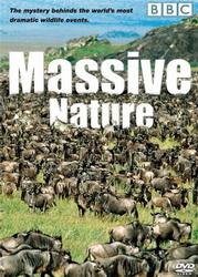 subtitrare Massive Nature (2004)