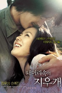 subtitrare A Moment to Remember / Nae meorisokui jiwoogae  (2004)