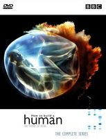 subtitrare How to Build a Human (2001)