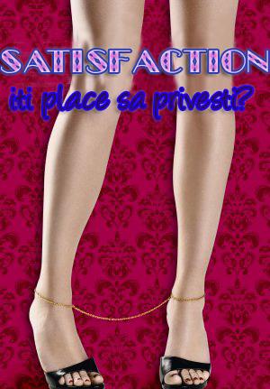 subtitrare Satisfaction (2007)