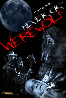 subtitrare Never Cry Werewolf (2008) (TV)