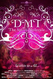 subtitrare DMT: The Spirit Molecule (2010)