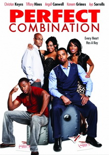 subtitrare Perfect Combination (2010)