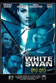 subtitrare Assassins Run / Shadows of the White Nights  (2013)