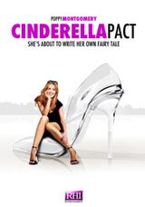 subtitrare Lying to Be Perfect (2010)