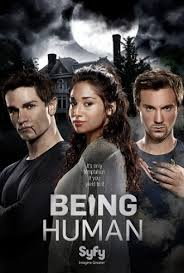 subtitrare Being Human (2010)
