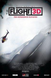 subtitrare The Art of Flight (2011)
