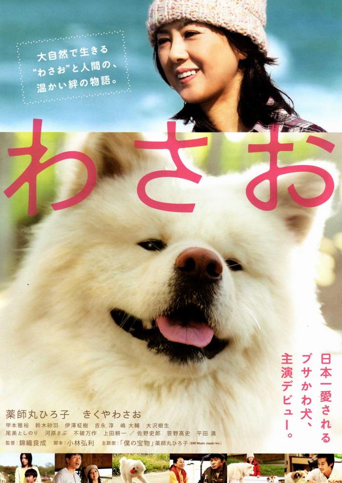 subtitrare Wasao (2011)
