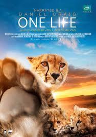 subtitrare One Life (2011)