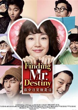 subtitrare Finding Mr Destiny (2010)