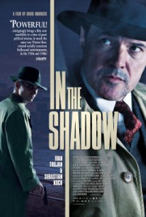 subtitrare Ve Stinu / In the Shadow  (2012)