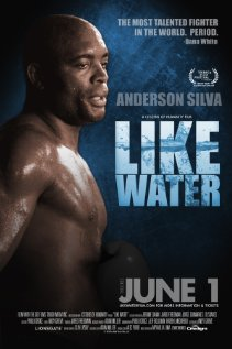 subtitrare Like Water (2011)