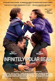 subtitrare Infinitely Polar Bear (2014)