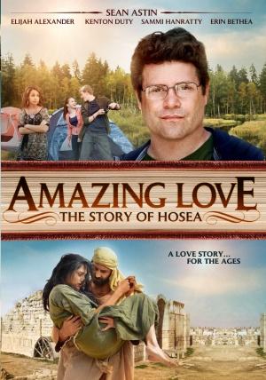 subtitrare Amazing Love (2012)