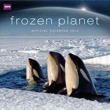 subtitrare Frozen Planet (2011)
