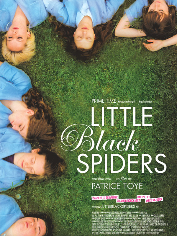 subtitrare Little black spiders (2012)