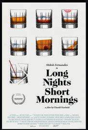 subtitrare Long Nights Short Mornings (2016)