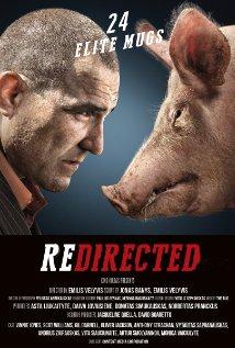 subtitrare Redirected (2014)