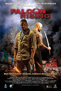 subtitrare Falcon Rising (2014)