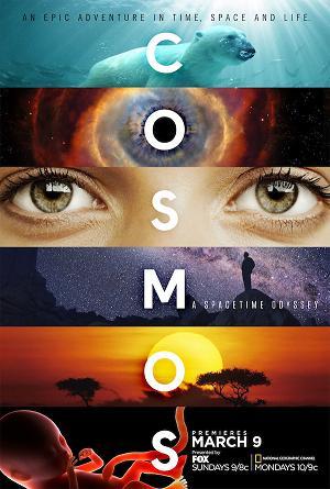 subtitrare Cosmos: A SpaceTime Odyssey (2014)