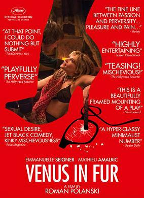 subtitrare Venus in Fur (2013)