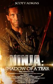 subtitrare Ninja: Shadow of a Tear (2013)