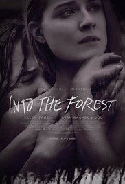 subtitrare Into the Forest (2015)