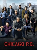 subtitrare Chicago PD (2013)