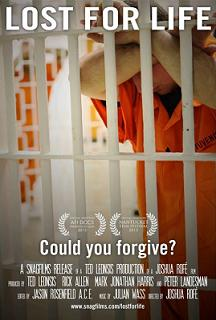 subtitrare Lost for Life (2013)