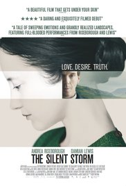 subtitrare The Silent Storm (2014)