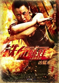 subtitrare Angel Warriors (2013)