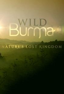 subtitrare Wild Burma: Nature`s Lost Kingdom (2013)