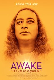 subtitrare Awake: The Life of Yogananda (2014)