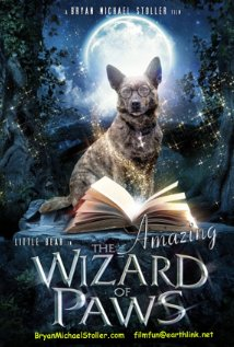 subtitrare The Amazing Wizard of Paws (2015)