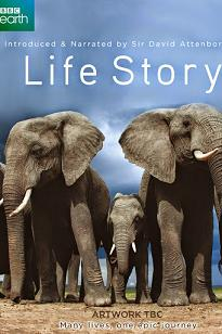 subtitrare Life Story (2014)