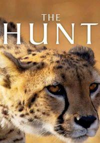 subtitrare The Hunt (2015)