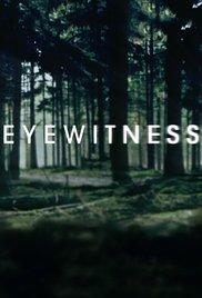 subtitrare Eyewitness (2016)