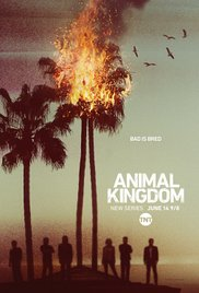 subtitrare Animal Kingdom (2016)