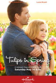 subtitrare Tulips in Spring / Tulips for Rose  (2016)