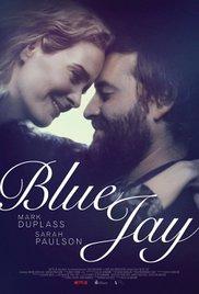 subtitrare Blue Jay (2016)
